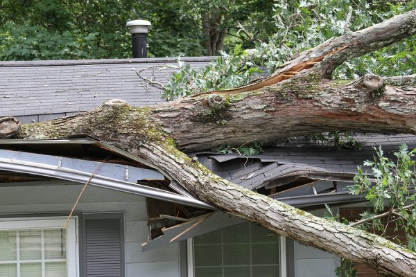 bigstock Storm Damage 21500924